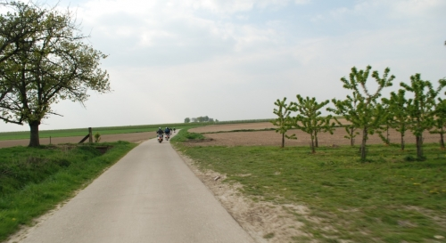 Bloesemrit 2011 58