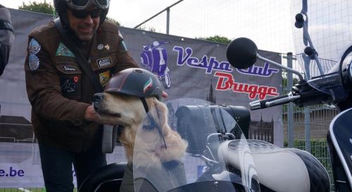 VC Brugge 02
