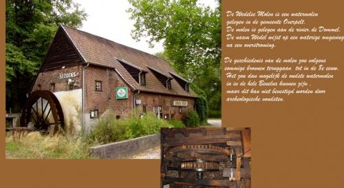 Dommelrit VC Neerpelt 2010 111