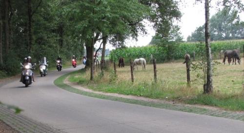 Dommelrit VC Neerpelt 2010 59