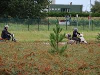 VCL Training 2011 38