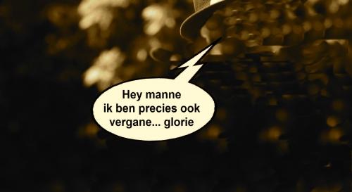 Vergane glorie Antwerpen 2013 01