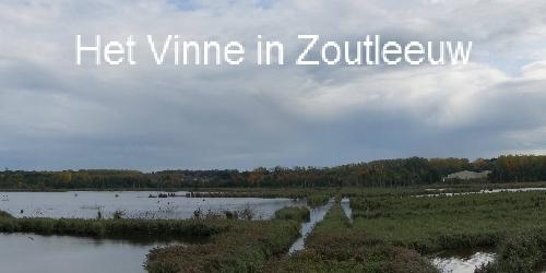 Vinne Zoutleew Herfst 2013 01