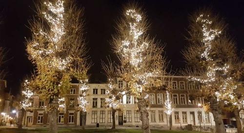 Winterwandeling_Leuven_2017 29