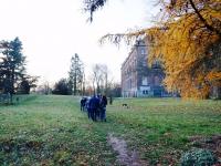 Winterwandeling_Leuven_2017 03
